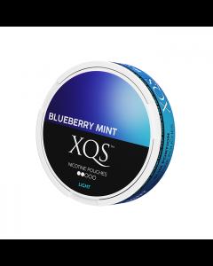 XQS Blueberry Mint Slim Light Nicotine Pouches
